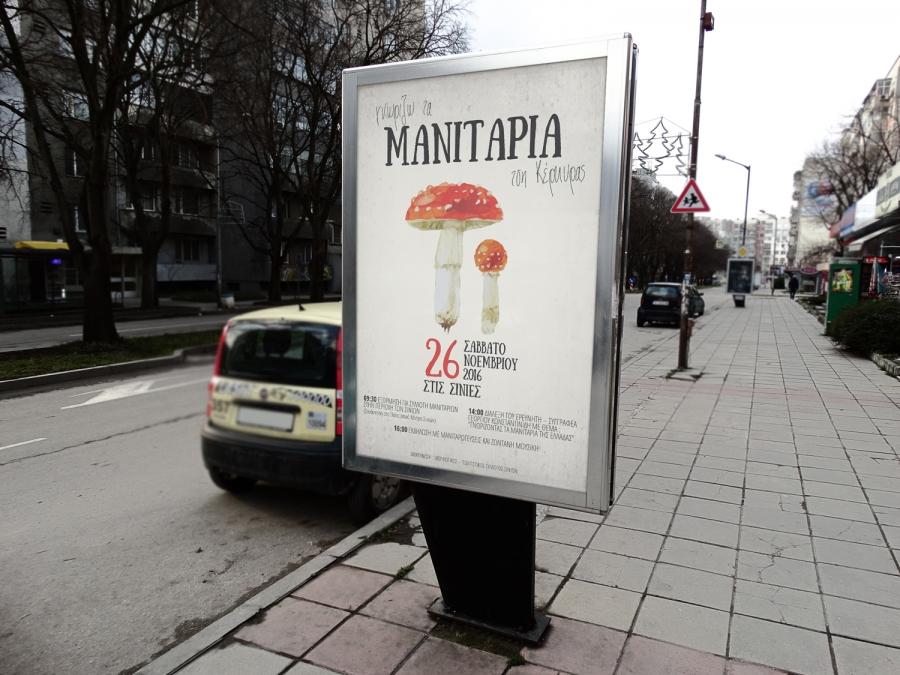 Corfu's Mushrooms 2016
